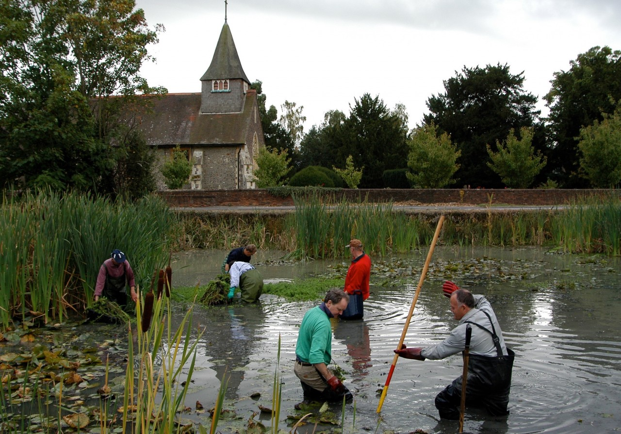 Pond working party busy with their task